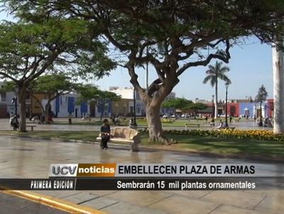 Sembrar N 15 Mil Plantas Ornamentales En Plaza De Armas