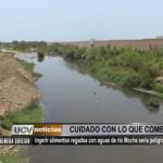 Ingerir alimentos regados con agua del río Moche sería peligroso