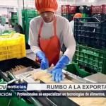 Profesionales se especializan en tecnologías de alimentos