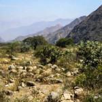 La Libertad: Crean primera Área de Conservación Ambiental