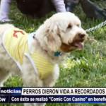 """Trujillo: Mascotas dieron vida a súper héroes en """"Comic Con Canino"""""""