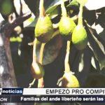 La Libertad: Gerencia Regional de Agricultura lanza proyecto Pro Compite