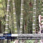 Lambayeque: Capacitan a productores y comercializadores en uso sostenible del bambú