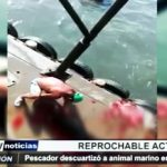 Virú: Pescador descuartizó animal marino en Puerto Morín