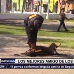 Trujillo: 18 perros conforman brigada canina de Seguridad Ciudadana
