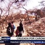 San Pedro de Lloc: Impulsan reforestación de bosque Cañoncillo