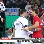 Tenis: Juan Martín del Potro venció a Ivo Karlovic