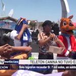 Chimbote: Teletón canina no tuvo éxito