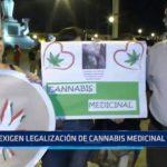 Trujillo: Exigen legalización de cannabis medicinal