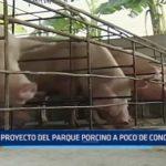 Trujillo: Proyecto del Parque Porcino a punto de concretarse