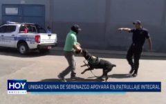 Trujillo: Unidad canina de Serenazgo apoyará en patrullaje integral