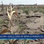 Ascope: Agricultores de Nepen 10 pierden sus cultivos