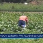 MINAGRI: 102 millones para recuperar estructura agrícola
