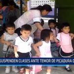 Iquitos: Suspenden clases ante temor de picaduras de abejas