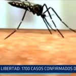 La Libertad: 1700 casos confirmados de dengue