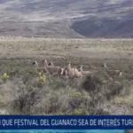 La Libertad: Piden que Festival del Guanaco sea de interés turístico regional