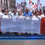 Preparan elecciones internas en partido Acción Popular