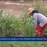 La Libertad: Gerencia de Agricultura promociona productos locales