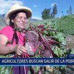 Santiago de Chuco: Agricultores buscan salir de la pobreza