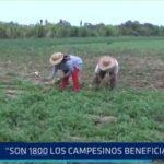 La Libertad: 1800 agricultores beneficiados con bonos