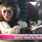 """PETA denuncia maltrato del mono de """"Piratas del Caribe"""""""