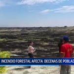 Piura: Incendio forestal afecta a decenas de pobladores