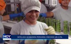 """""""Economía peruana crecerá en un 2.5%"""""""