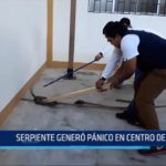 Iquitos: Serpiente generó pánico en centro de salud