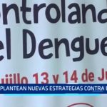 Plantean nuevas estrategias contra el dengue