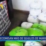Huamachuco: Decomisan más de 50 kilos de marihuana