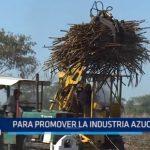 Evento Sugarex Perú promueve la industria azucarera
