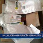 Piura: Hallan roedor en almacén de productos Qali Warma