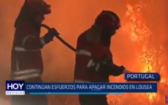 Portugal: Continúan esfuerzos para apagar incendios en Lousea