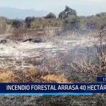 Chiclayo: Incendio forestal arrasa 40 hectáreas en la zona Tambo Real