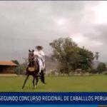 Chiclayo: Segundo concurso regional de caballos peruano de paso