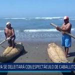 Huanchaco: Papa se deleitará con espectáculo de caballitos de totora