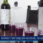 Divino 7: Un vino sin alcohol ni azucar