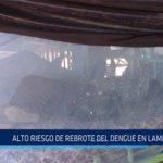 Chiclayo: Alto riesgo de rebrote del dengue en Lambayeque