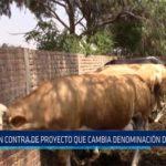 Chiclayo: En contra de proyecto que cambia denominación de la leche