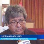 Aquino: Gerente de Agricultura exhorta al diálogo con agricultores