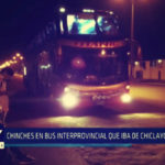 Chimbote: Chinches en bus interprovincial