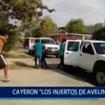 """Piura: Cayeron """"Los Injertos de Avelino"""""""