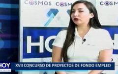 XVII Concurso de Proyectos de Fondo de Empleo