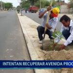 Piura:  Intentan recuperar Avenida Progreso