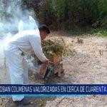 Chiclayo: Roban colmenas valorizadas en cerca de cuarenta mil soles