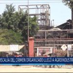 Chiclayo: Fiscalía del crimen organizado llegó a agroindustrial Tumán