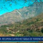 Gerencia Regional de Agricultura: Recupera cuatro hectáreas de terrenos invadidos