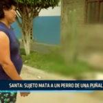Santa: Acuchillan a can