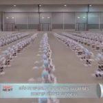 Más de un millar de robots bailarines rompen récord Guinness