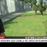 Sáenz asegura que liguilla se juega en Mansiche